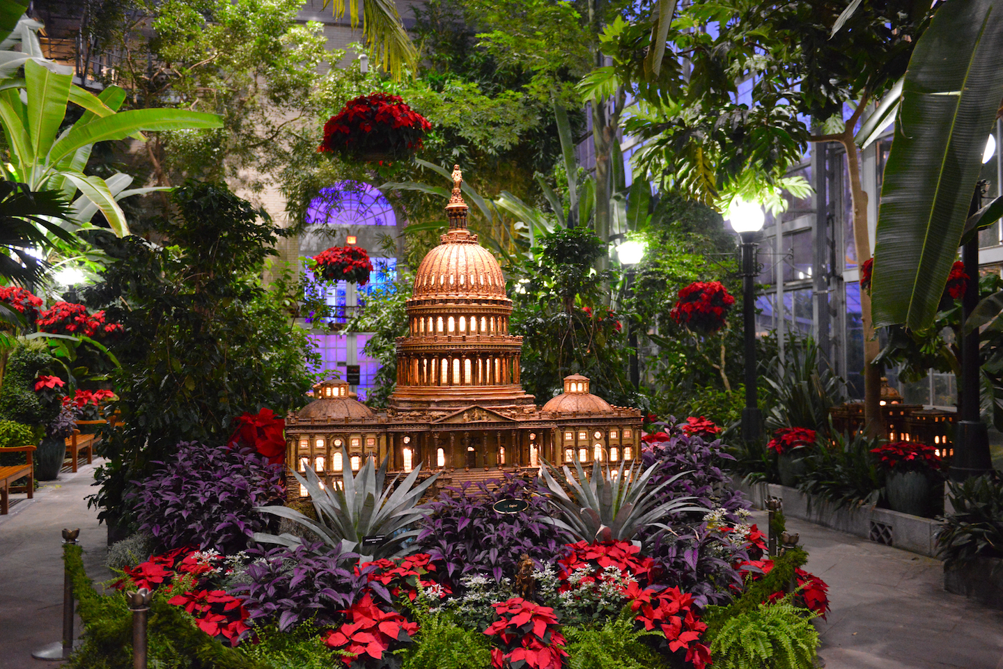 holiday show with poinsettias and U.S. Capitol building made from plant parts