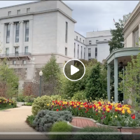 Video tour of Bartholdi Park in spring